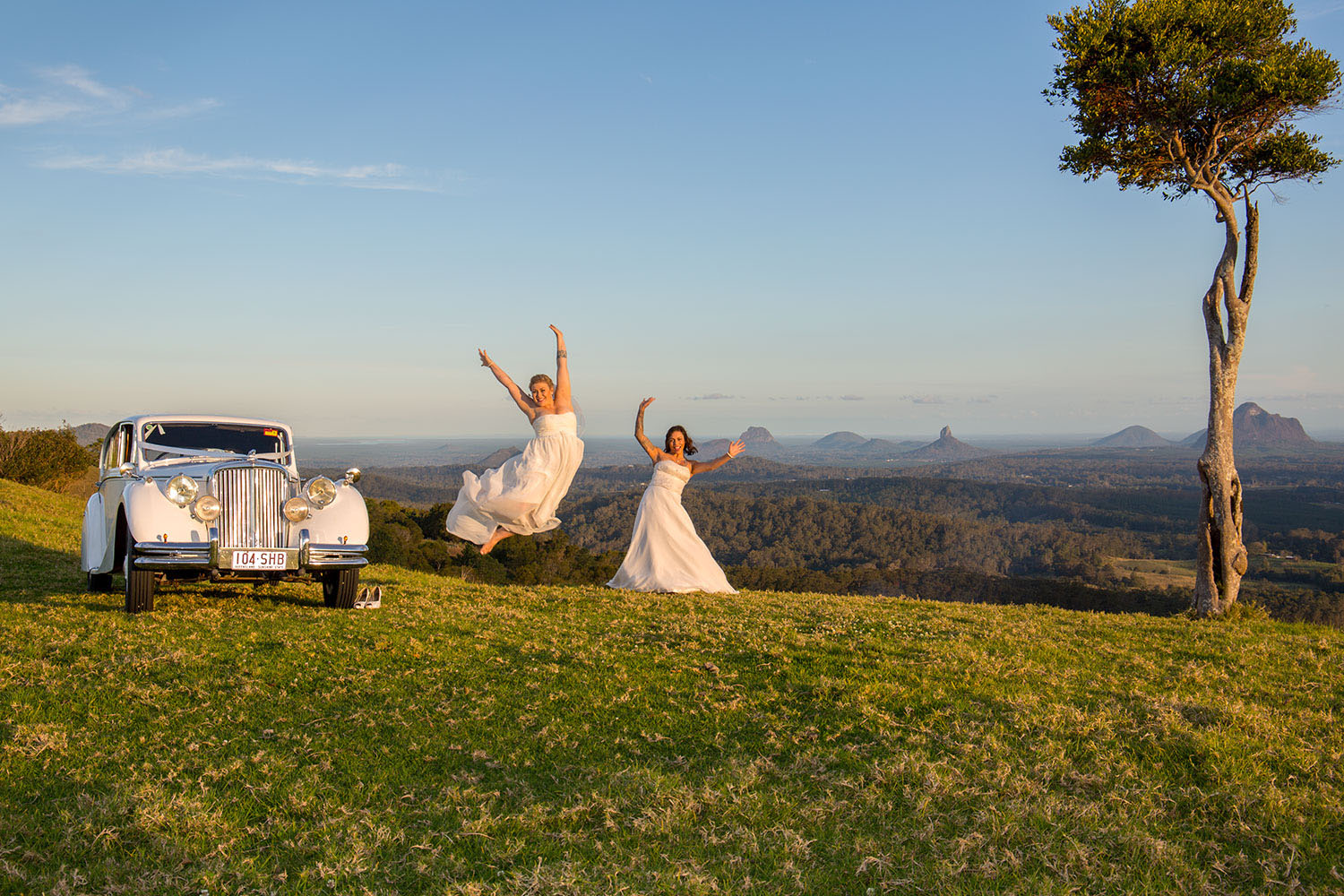 maleny wedding at one tree hill