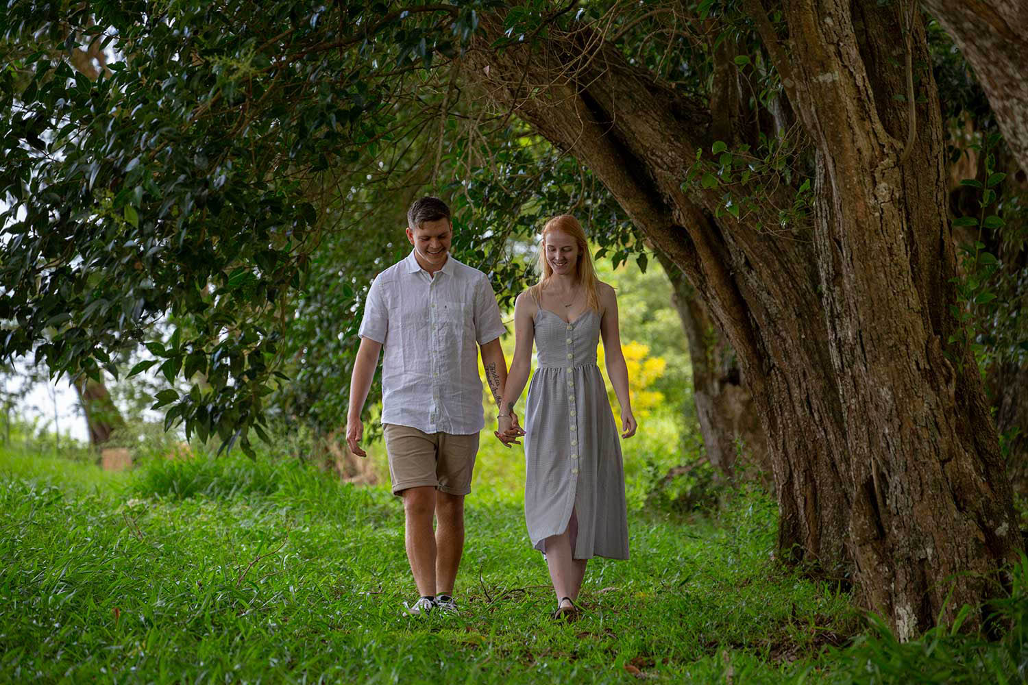 Engagement photo sunshine coast hinterland